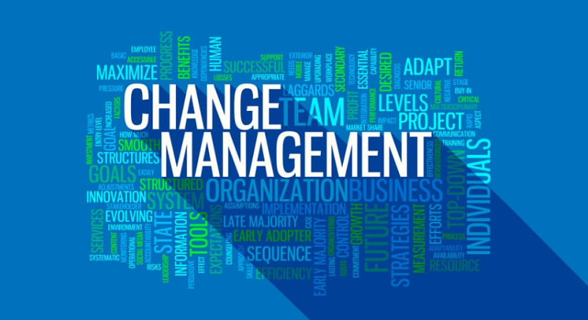 Master thesis on change management